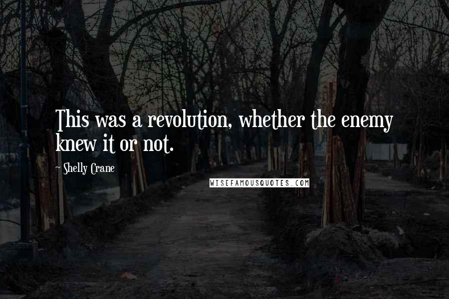 Shelly Crane quotes: This was a revolution, whether the enemy knew it or not.