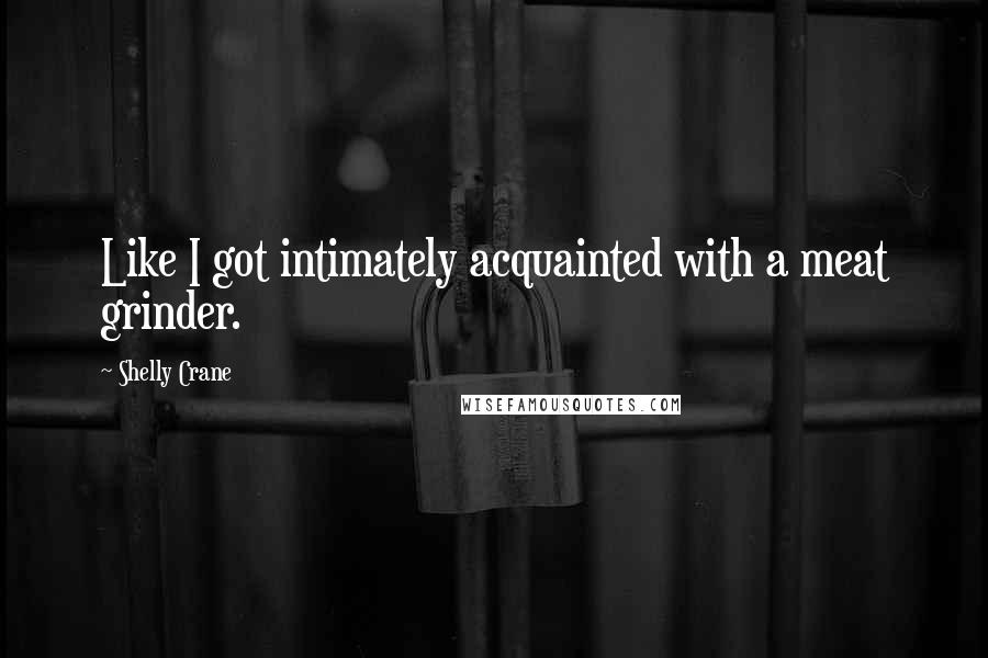 Shelly Crane quotes: Like I got intimately acquainted with a meat grinder.