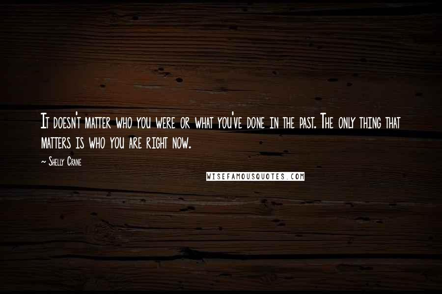 Shelly Crane quotes: It doesn't matter who you were or what you've done in the past. The only thing that matters is who you are right now.