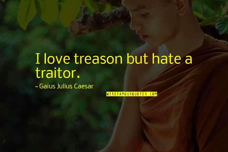 Shelter Adoption Quotes By Gaius Julius Caesar: I love treason but hate a traitor.