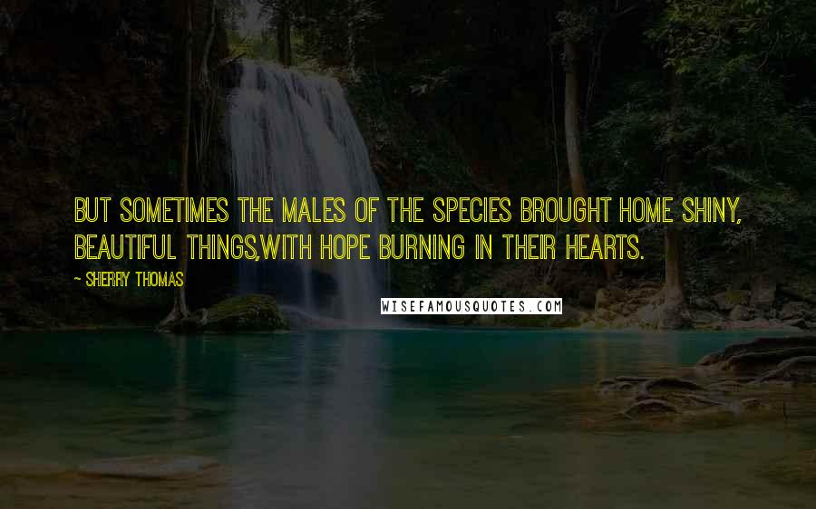 Sherry Thomas quotes: But sometimes the males of the species brought home shiny, beautiful things,with hope burning in their hearts.