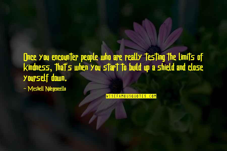 Shield Yourself Quotes By Meshell Ndegeocello: Once you encounter people who are really testing