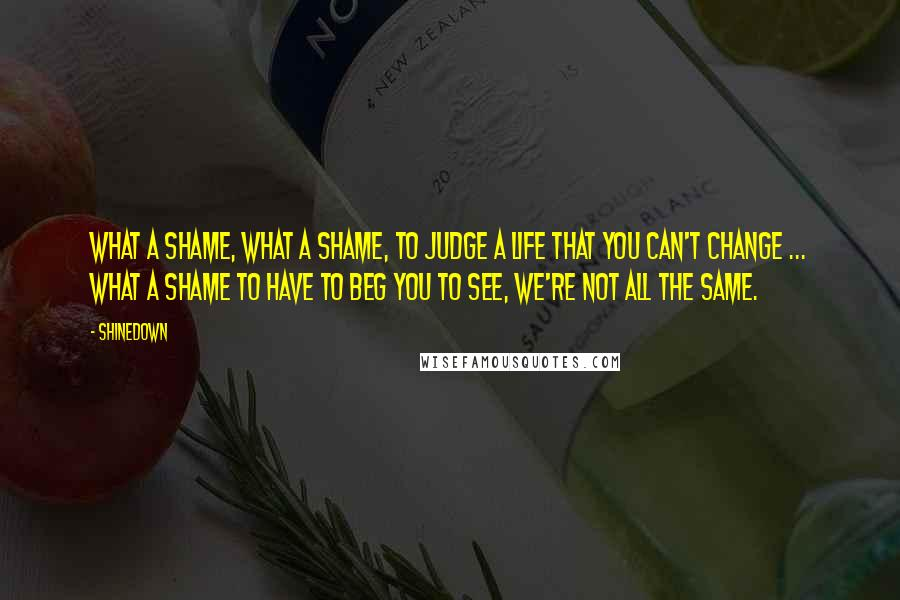 Shinedown quotes: What a shame, what a shame, to judge a life that you can't change ... What a shame to have to beg you to see, we're not all the same.