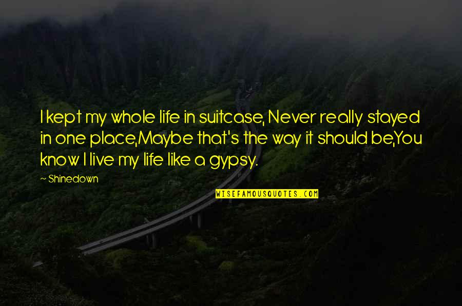 Shinedown Quotes By Shinedown: I kept my whole life in suitcase, Never