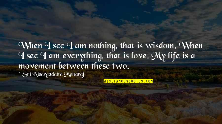 Shinoda Bolen Quotes By Sri Nisargadatta Maharaj: When I see I am nothing, that is
