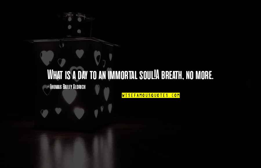 Shinoda Bolen Quotes By Thomas Bailey Aldrich: What is a day to an immortal soul!A