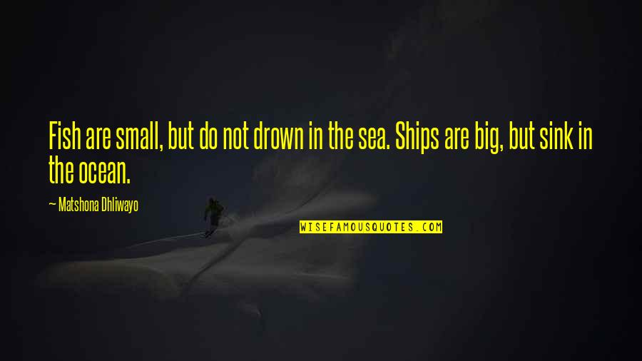 Ships And The Sea Quotes By Matshona Dhliwayo: Fish are small, but do not drown in