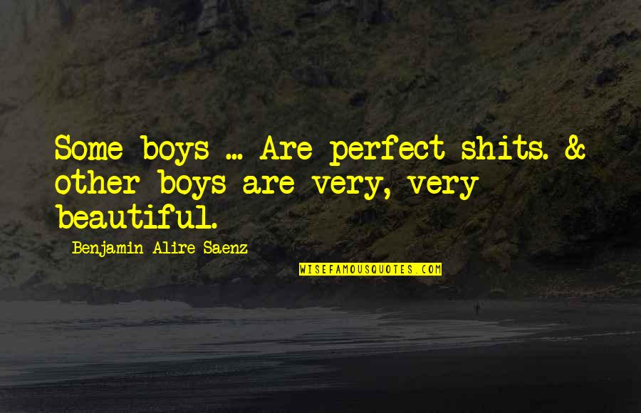 Shits Quotes By Benjamin Alire Saenz: Some boys ... Are perfect shits. & other