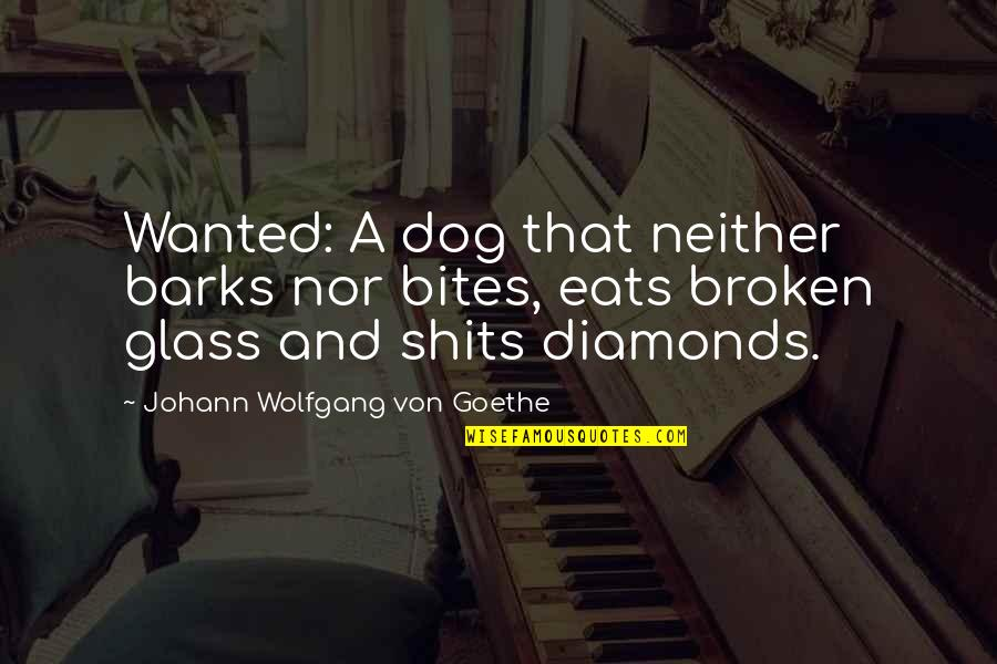 Shits Quotes By Johann Wolfgang Von Goethe: Wanted: A dog that neither barks nor bites,