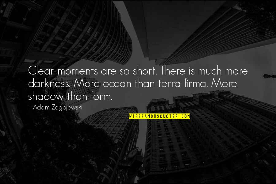 Short Ocean Quotes By Adam Zagajewski: Clear moments are so short. There is much