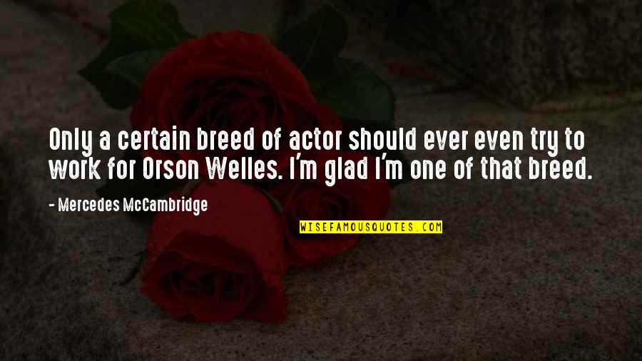 Should I Try Quotes By Mercedes McCambridge: Only a certain breed of actor should ever