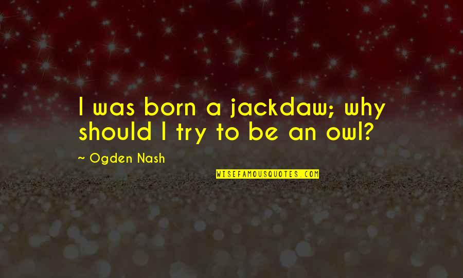 Should I Try Quotes By Ogden Nash: I was born a jackdaw; why should I