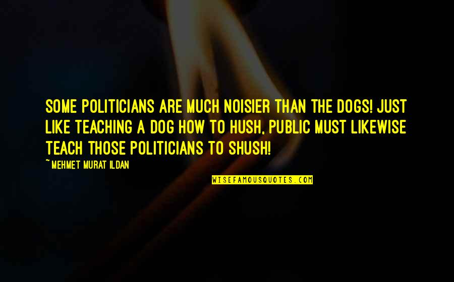 Shush Quotes By Mehmet Murat Ildan: Some politicians are much noisier than the dogs!