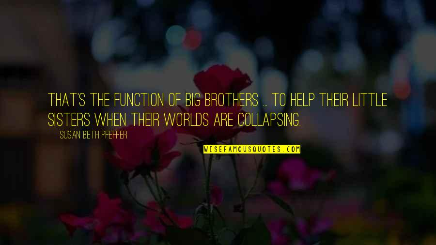 Siblings And Family Quotes By Susan Beth Pfeffer: That's the function of big brothers ... to