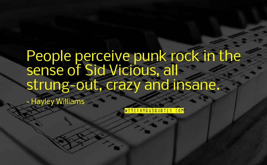 Sid Vicious Quotes By Hayley Williams: People perceive punk rock in the sense of