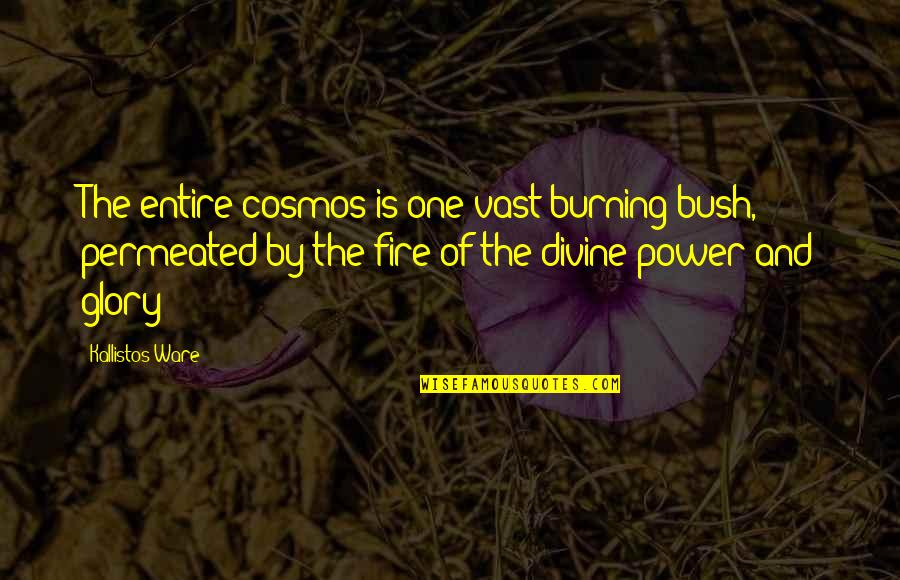 Sif 616 Quotes By Kallistos Ware: The entire cosmos is one vast burning bush,