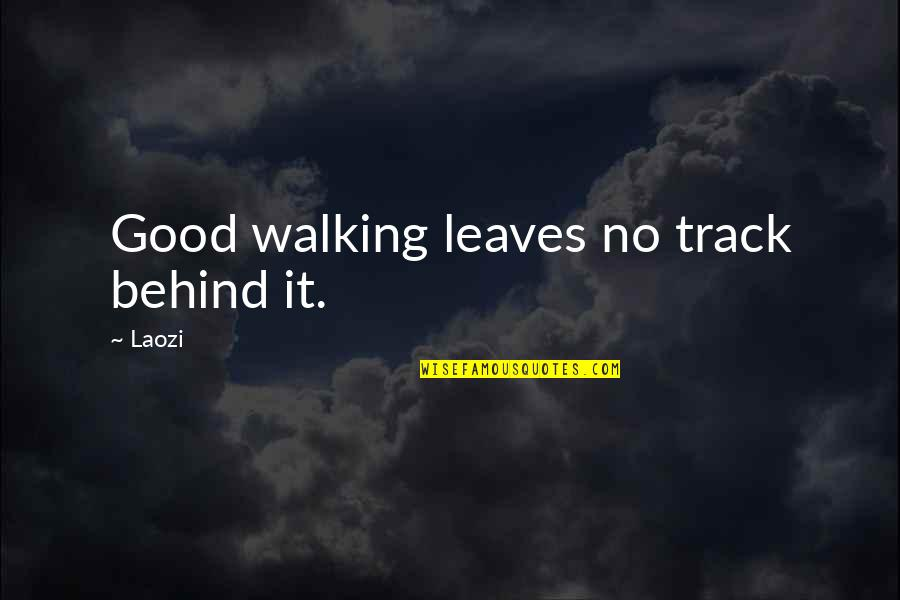 Silence Of The Sea Quotes By Laozi: Good walking leaves no track behind it.