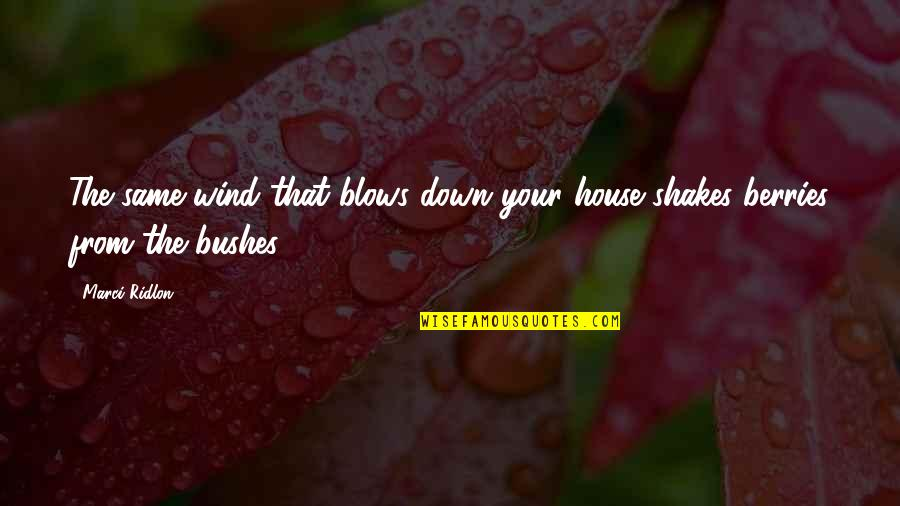 Silver Lining Quotes By Marci Ridlon: The same wind that blows down your house