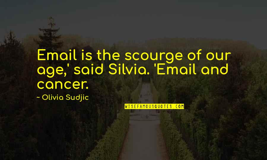 Silvia's Quotes By Olivia Sudjic: Email is the scourge of our age,' said