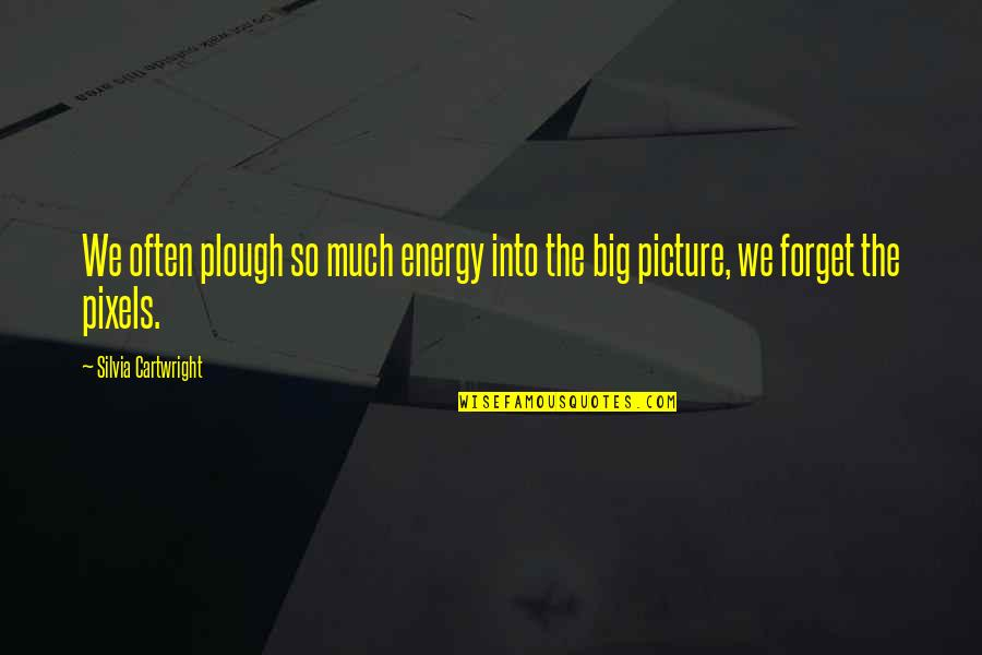 Silvia's Quotes By Silvia Cartwright: We often plough so much energy into the