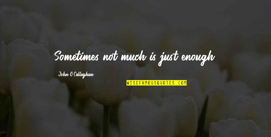 Similarity Difference Quotes By John O'Callaghan: Sometimes not much is just enough.