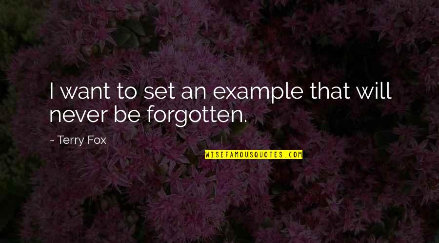 Similarity Difference Quotes By Terry Fox: I want to set an example that will