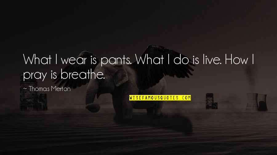 Simple Details Quotes By Thomas Merton: What I wear is pants. What I do