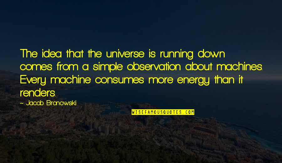 Simple Machines Quotes By Jacob Bronowski: The idea that the universe is running down