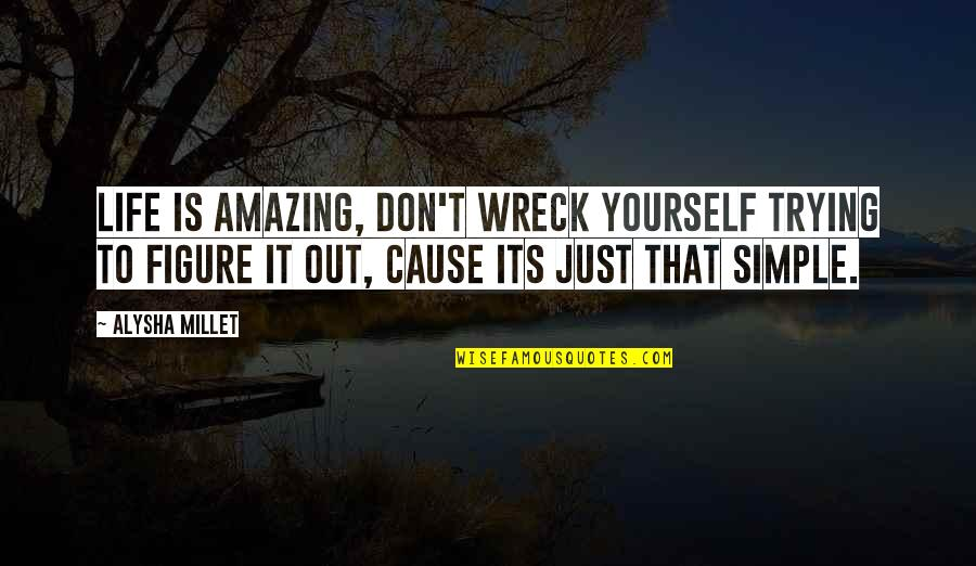 Simple Yet Amazing Quotes By Alysha Millet: Life is amazing, don't wreck yourself trying to