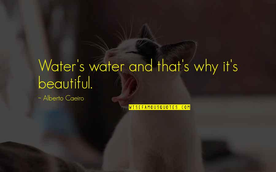 Simplicity And Life Quotes By Alberto Caeiro: Water's water and that's why it's beautiful.