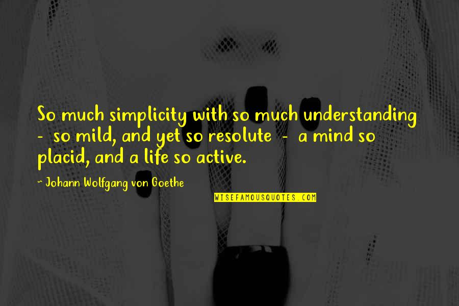 Simplicity And Life Quotes By Johann Wolfgang Von Goethe: So much simplicity with so much understanding -