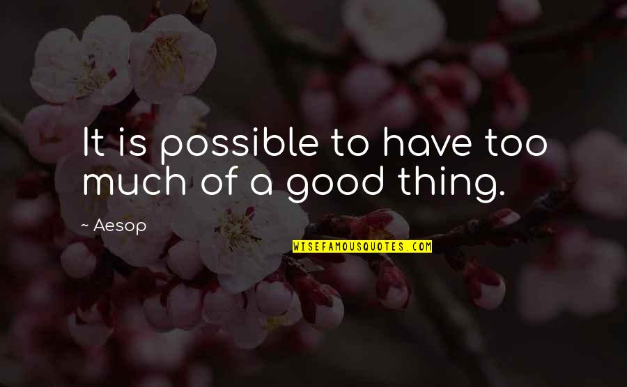 Sin Scarlet Letter Quotes By Aesop: It is possible to have too much of
