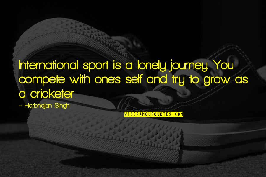 Singh's Quotes By Harbhajan Singh: International sport is a lonely journey. You compete