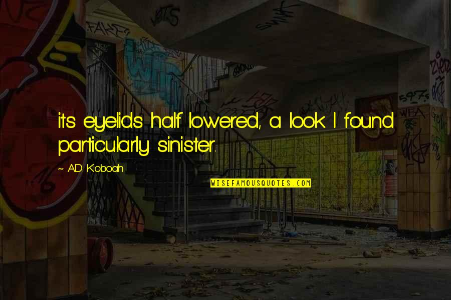 Sinister Quotes By A.D. Koboah: its eyelids half lowered, a look I found