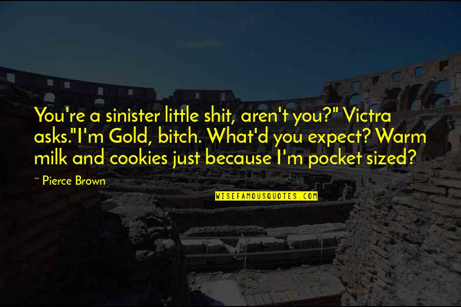"""Sinister Quotes By Pierce Brown: You're a sinister little shit, aren't you?"""" Victra"""
