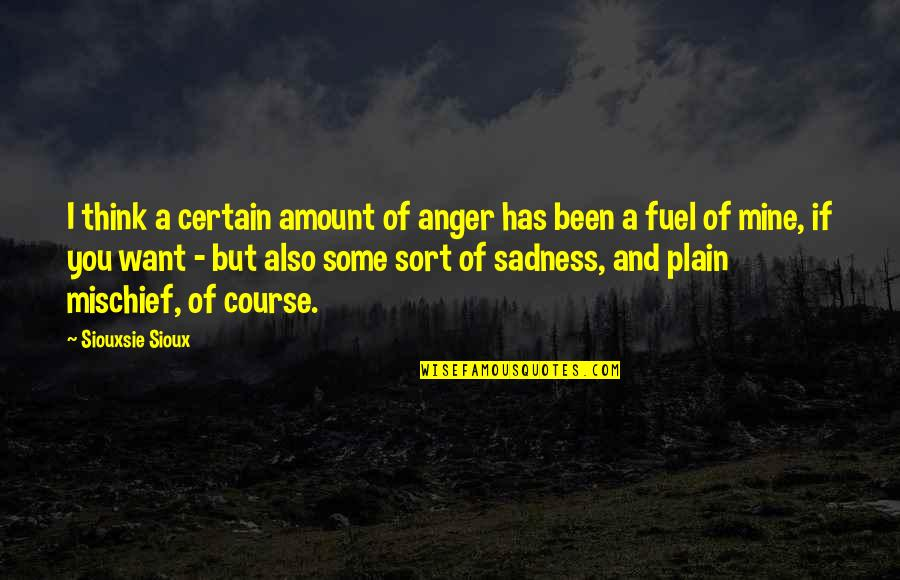 Siouxsie Sioux Quotes By Siouxsie Sioux: I think a certain amount of anger has
