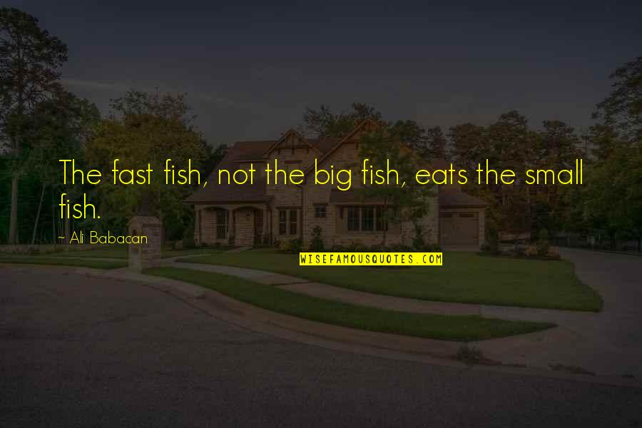 Sister In Law 50th Birthday Quotes By Ali Babacan: The fast fish, not the big fish, eats