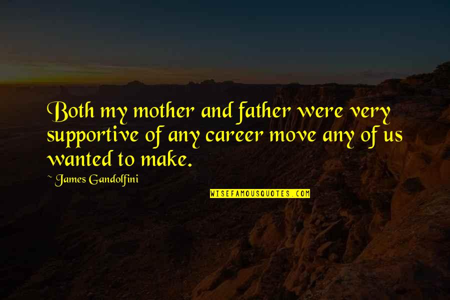 Sister Loves Little Brother Quotes By James Gandolfini: Both my mother and father were very supportive