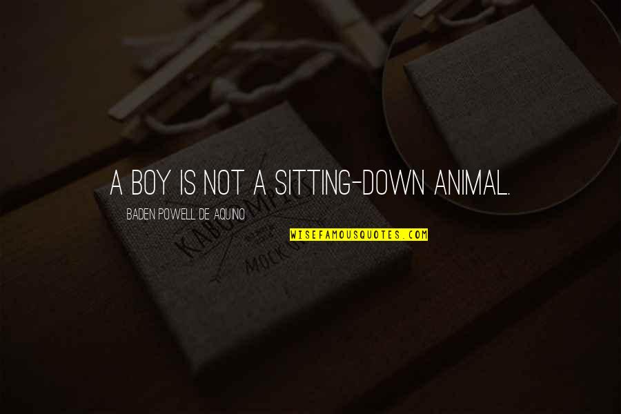 Sitting Down Quotes By Baden Powell De Aquino: A boy is not a sitting-down animal.