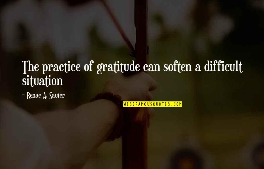 Situation Quotes And Quotes By Renae A. Sauter: The practice of gratitude can soften a difficult