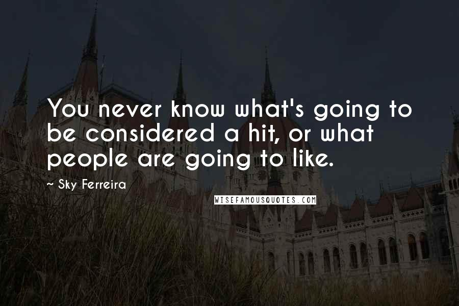Sky Ferreira quotes: You never know what's going to be considered a hit, or what people are going to like.