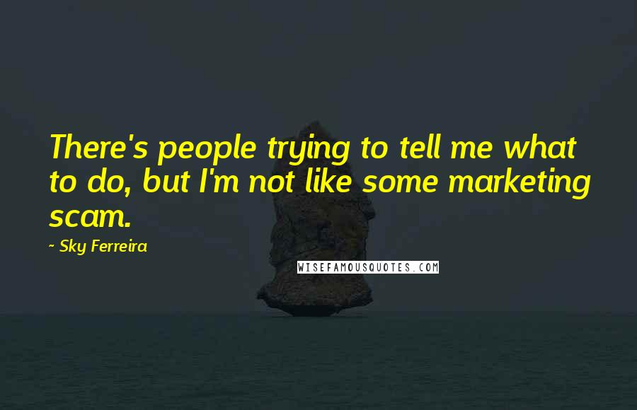 Sky Ferreira quotes: There's people trying to tell me what to do, but I'm not like some marketing scam.