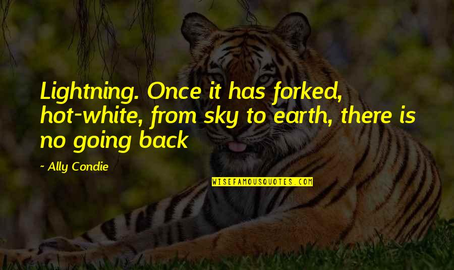Sky Life Quotes By Ally Condie: Lightning. Once it has forked, hot-white, from sky