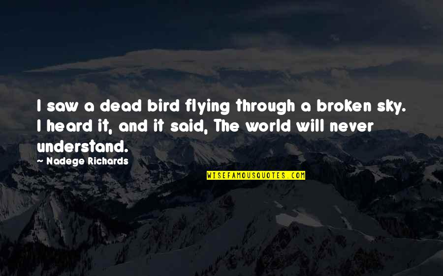 Sky Life Quotes By Nadege Richards: I saw a dead bird flying through a