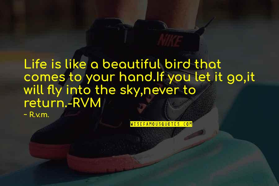 Sky Life Quotes By R.v.m.: Life is like a beautiful bird that comes