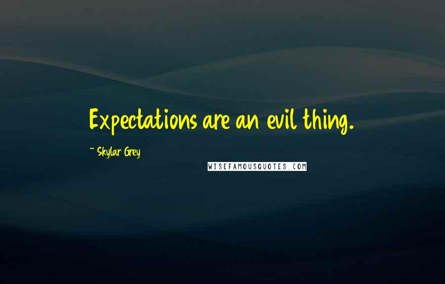 Skylar Grey quotes: Expectations are an evil thing.