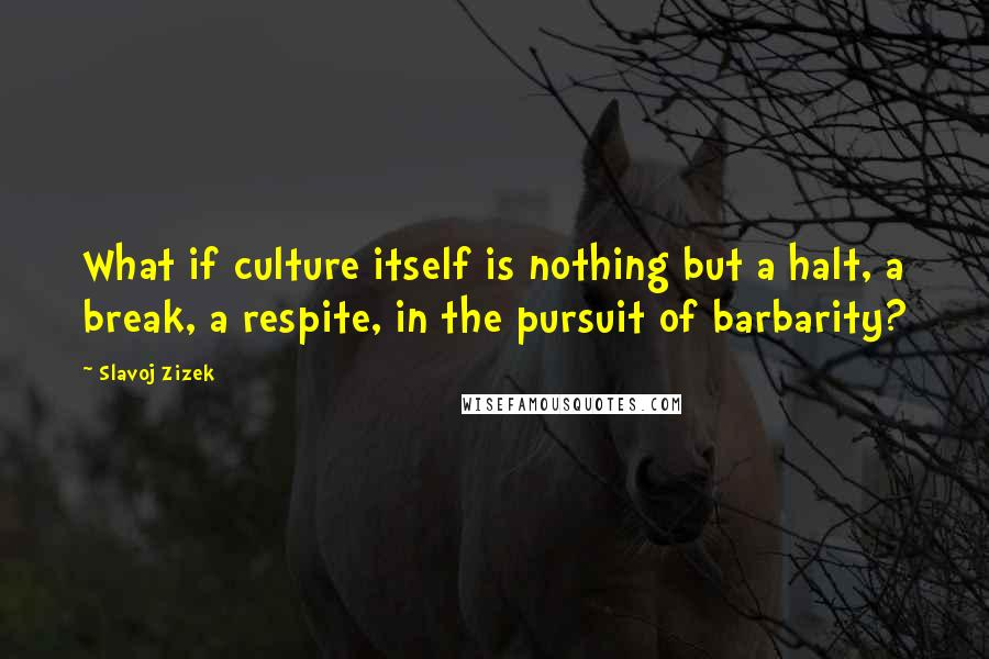 Slavoj Zizek quotes: What if culture itself is nothing but a halt, a break, a respite, in the pursuit of barbarity?