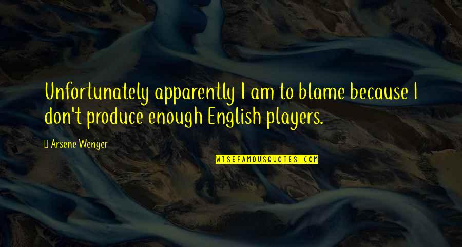 Sleepless Night Before Exam Quotes By Arsene Wenger: Unfortunately apparently I am to blame because I