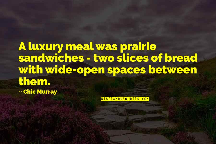 Slices Quotes By Chic Murray: A luxury meal was prairie sandwiches - two