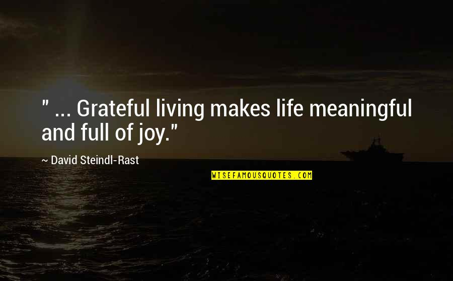 """Slizzard Quotes By David Steindl-Rast: """" ... Grateful living makes life meaningful and"""
